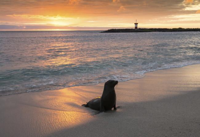 Iles Enchantées SLIDE 7 Coucher De Soleil Galapagos Bis Copy