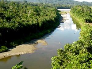 Extension Séjour En écolodge En Amazonie