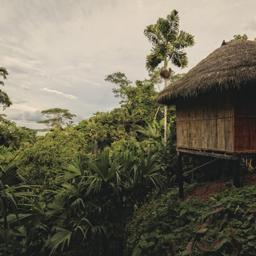 Yasuni Lodge