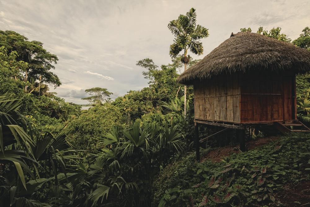 Yasuni Lodge