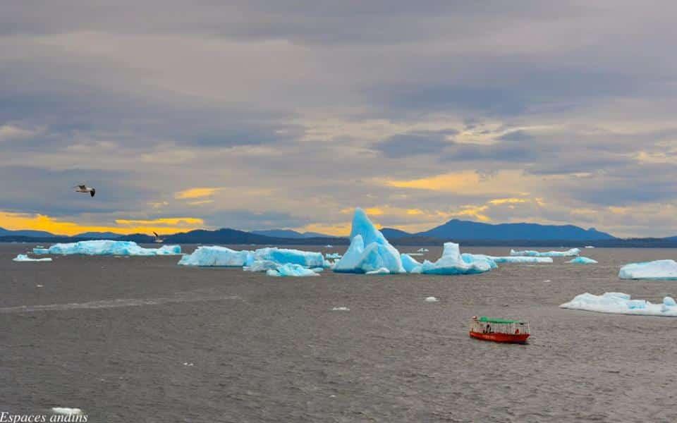 Espaces andins glacier San Rafael au Chili