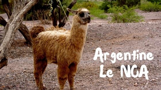Le Nord De L'Argentine (NOA)  Photo : Espaces Andins