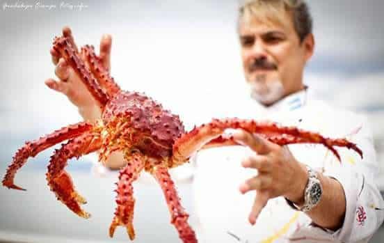 Le crabe royal d'ushuaia