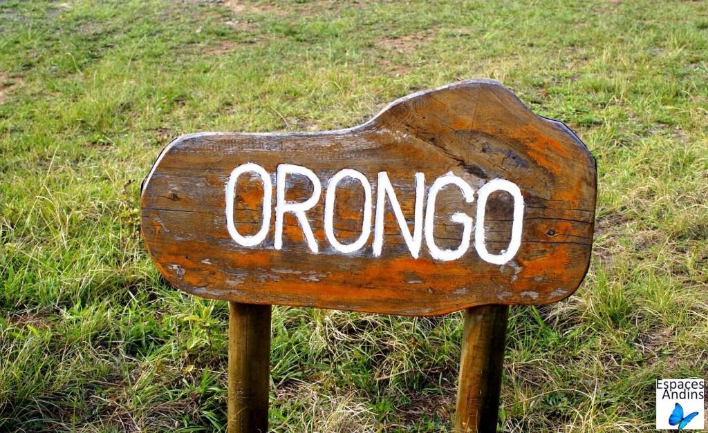 Le site cérémonial d'Orongo / Photo : Espaces Andins