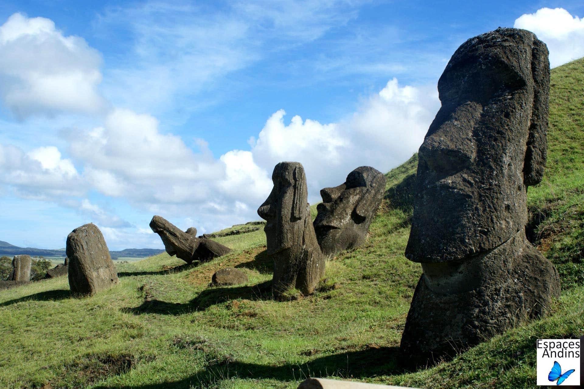 La Grande Carrière De Moai, Ile De Paques, Chili