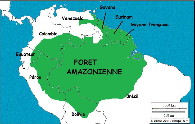 carte foret amazonie