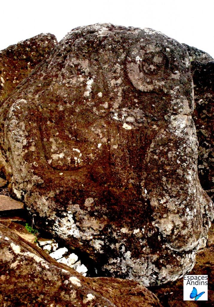 Pietroglyphes Orongo, Ile de Pâques / Photo : Espaces Andins