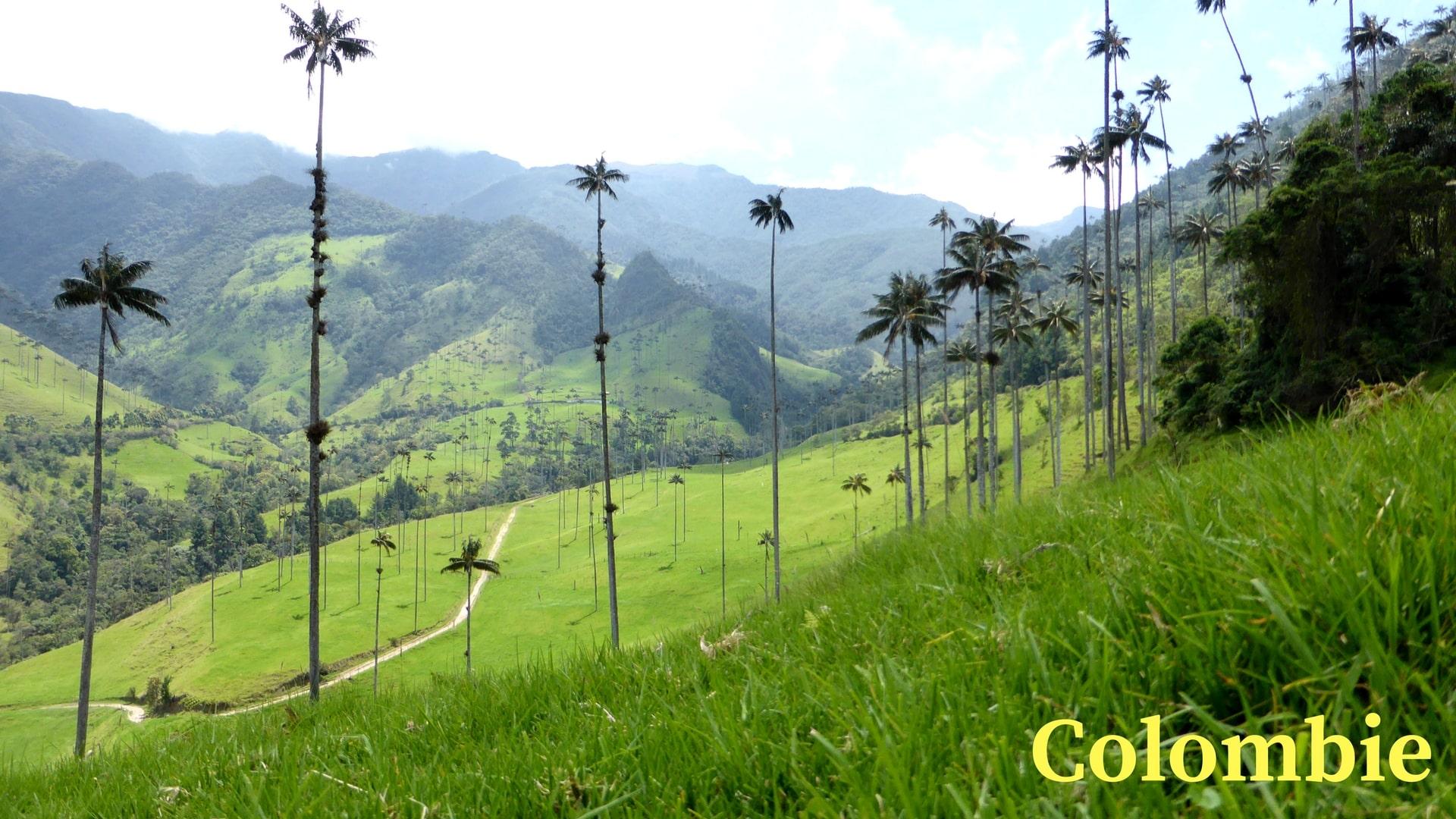 Article Sur La Colombie