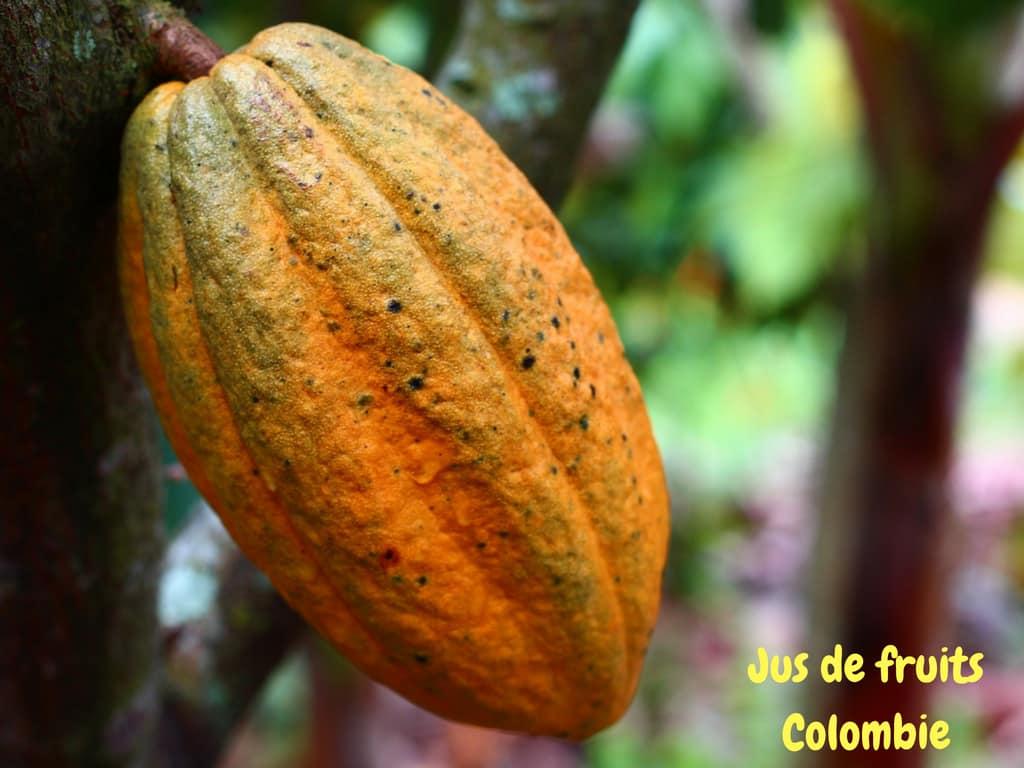 Le Jus De Fruits Des Colombiens, Boisson Divine
