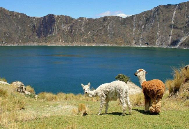 La Lagune Quilotoa En Equateur
