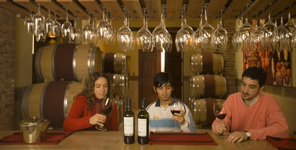 Dégustation de vins à Cafayate