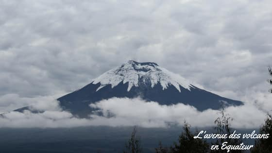 L'avenue Des Volcans En Equateur