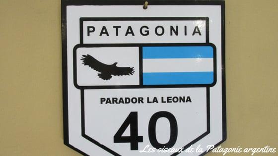 La Route 40 En Patagonie
