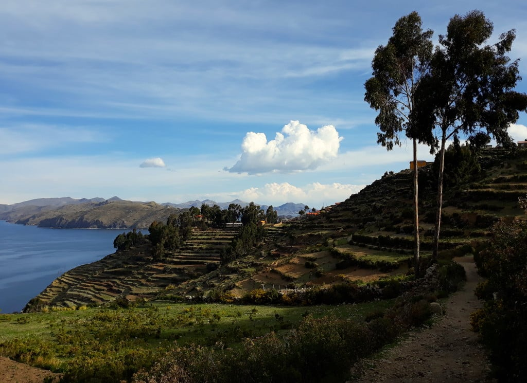 Les terrasses agricoles sur l'isla del sol, Bolivie, Lac Titicaca Photo : Espaces Andins