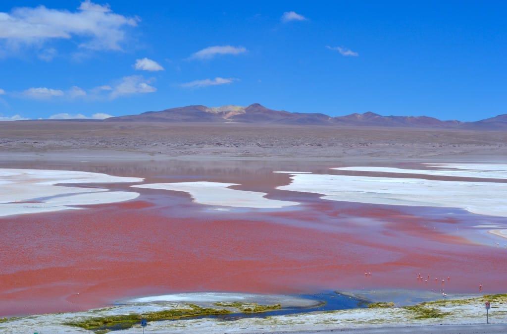 La Laguna Colorado et le volcan  Photo : Espaces Andins