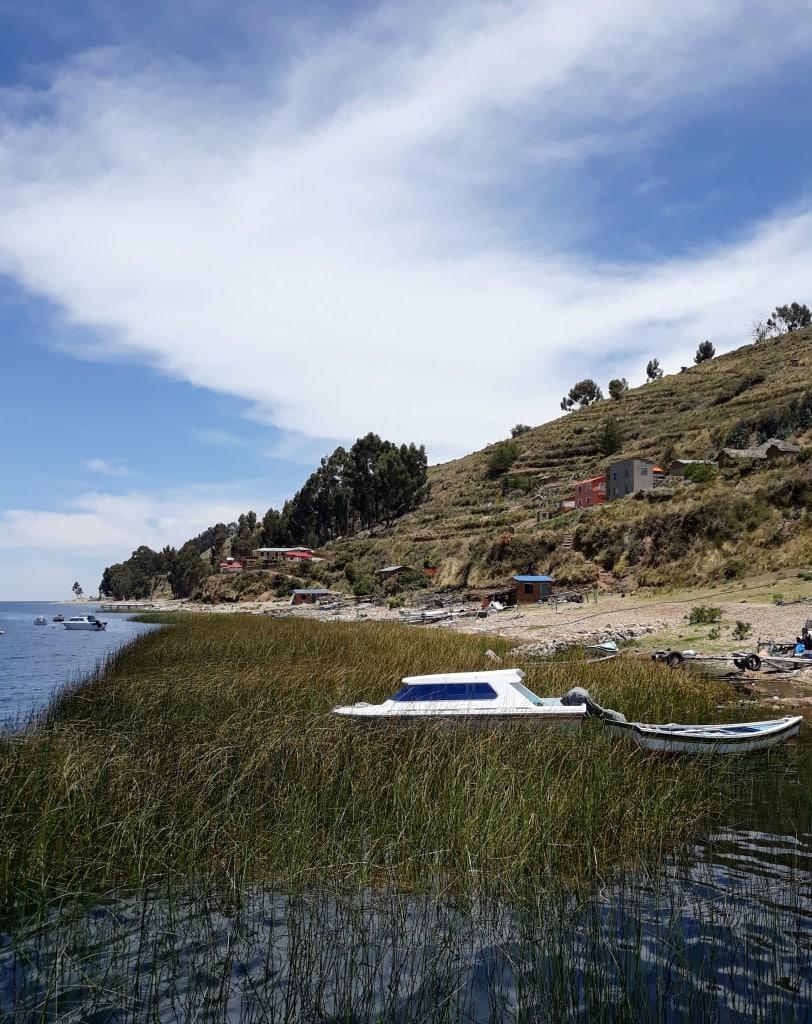 Roseaux Ile de la lune, Lac Titicaca, Bolivie Photo : Espaces Andins
