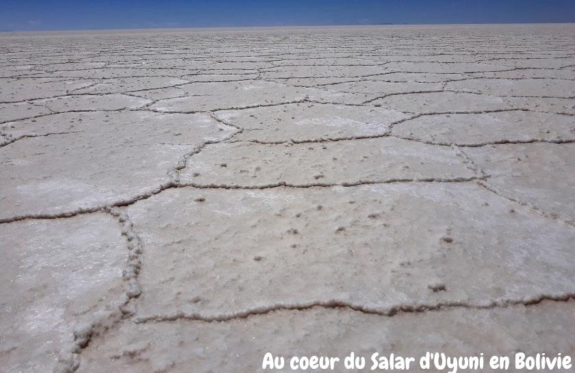 Au Coeur Du Salar D'Uyuni En Bolivie
