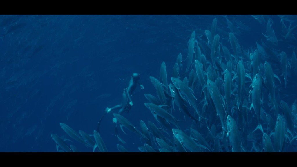 Photo : Galapagos Evolution Levector Films