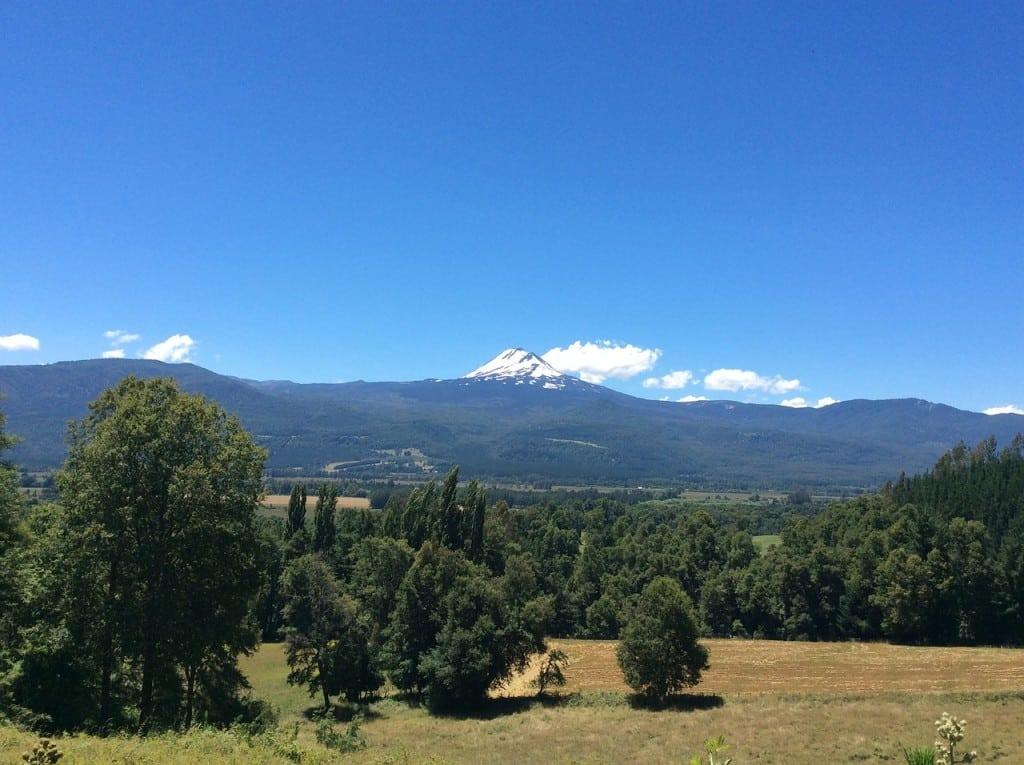 L'Araucanie dans la région des lacs au Chili