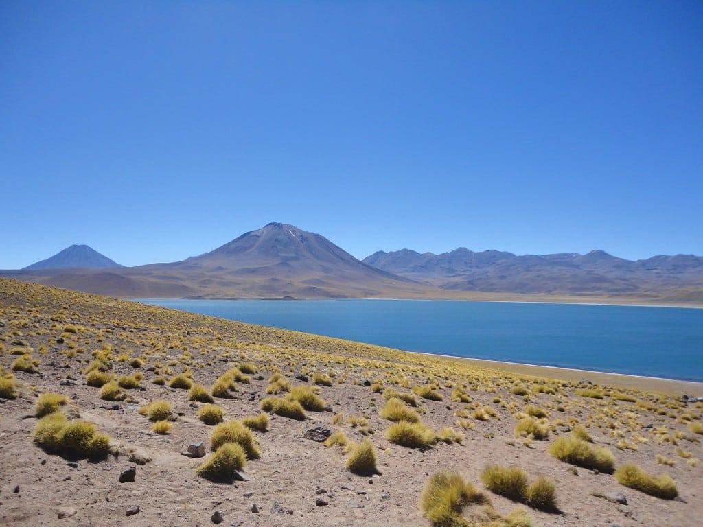 Paysages de lagunes, dans le désert d'Atacama. Voyage organisé francophone hors des sentiers battus au Chili