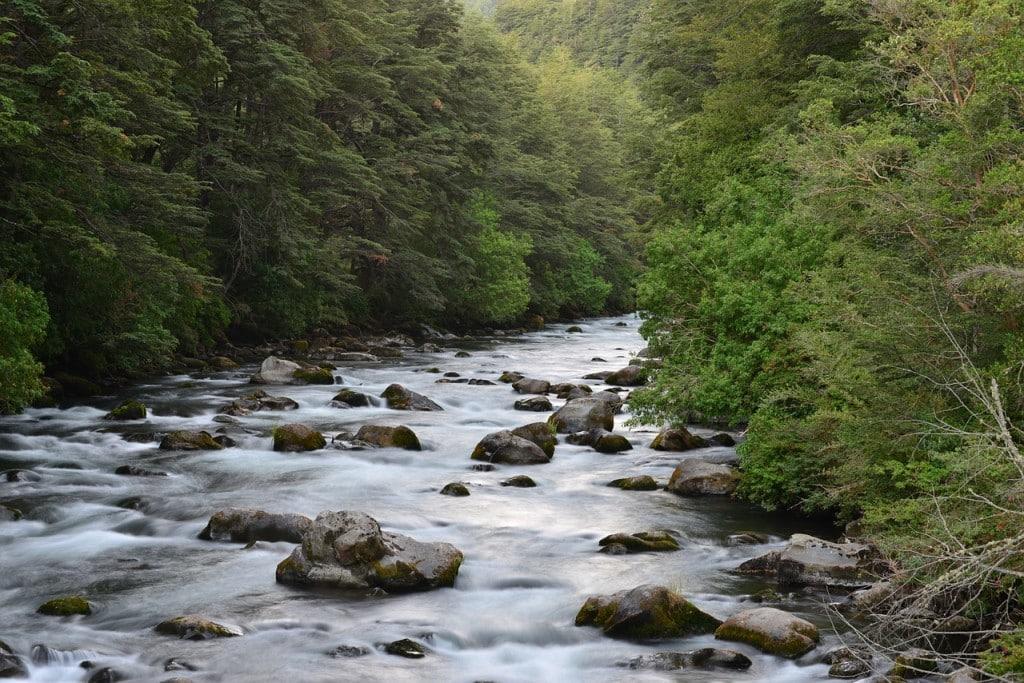 Rivière en Araucanie au Chili, voyage organisé hors des sentiers battus.