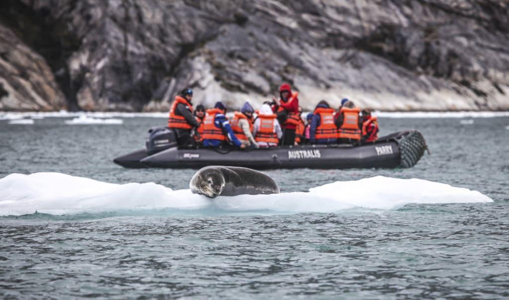 débarquement en bateau zodiac en terre de feu