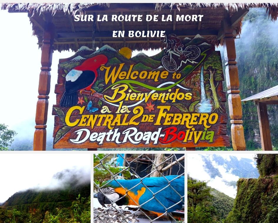 Route De La Mort Ou Los Yungas En Bolivie, Et Senda Verde, Refuge Animaux