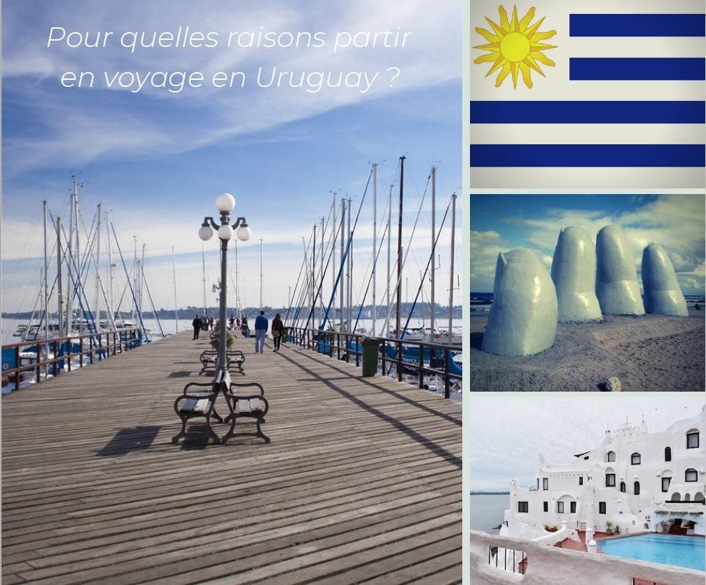 Pour Quelles Raisons Voyager En Uruguay ?