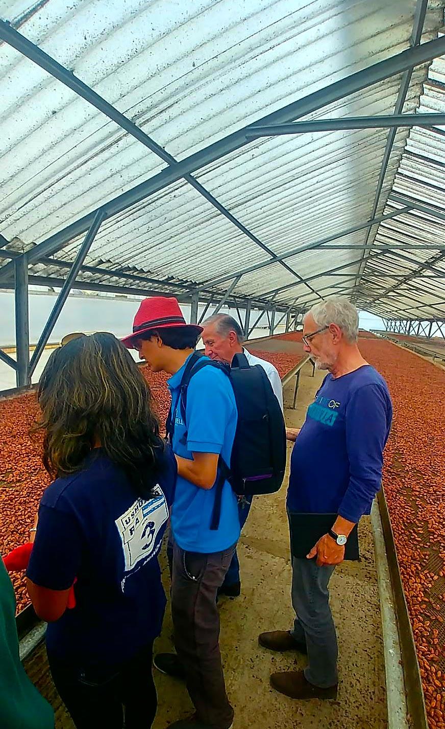 Visite Fabrique Cacao