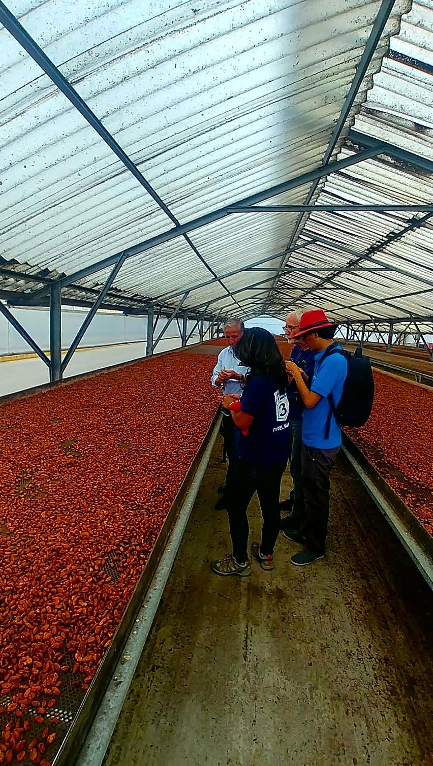 Visite Usine Cacao équateur