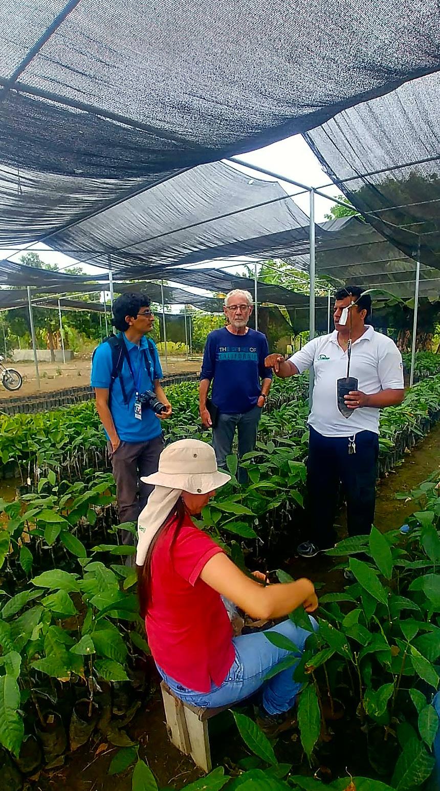 Visite Fabrique Cacao équateur Avec Espaces Andins