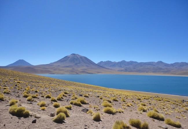 Lagune Altiplanique San Pedro Atacama Chili