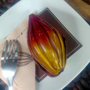 Republica Del Cacao Equateur Voyage Espaces Andins